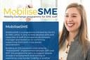 Mobilità per il personale delle PMI (MobiliseSME)